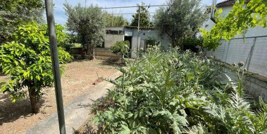 ΝΕΑ ΜΑΚΡΗ 2η Γειτονια: Παλαια Μονοκατοικια 45τμ με ομορφο κηπο 278τμ,600μ απο Παραλια GOLDENCOAST