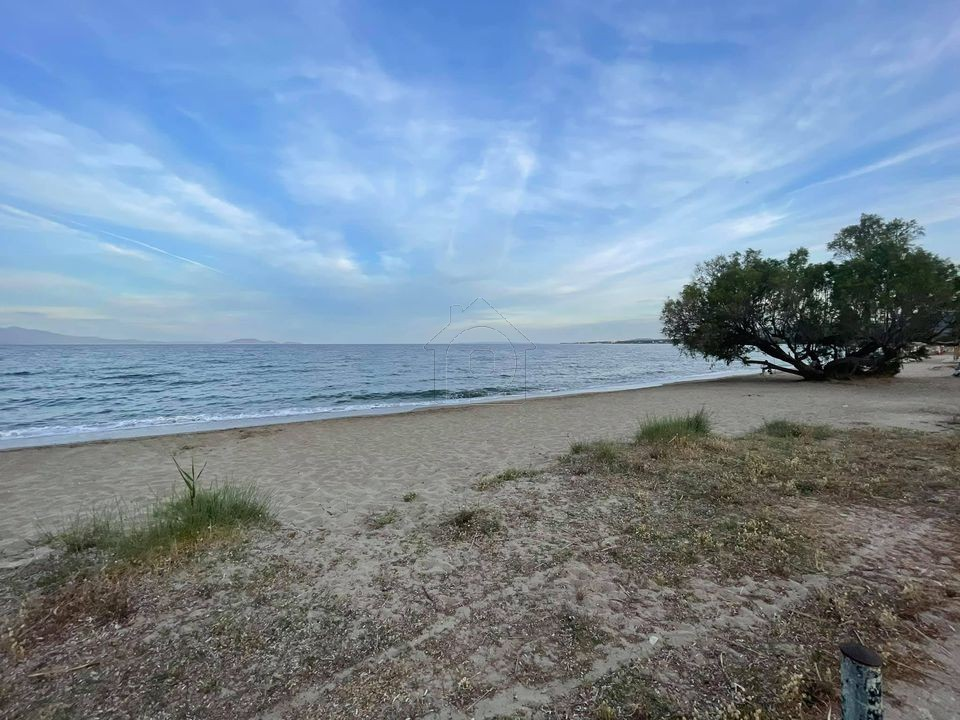 ΝΕΑ ΜΑΚΡΗ Παραλια Golden Coast: ΟΙΚΟΔΟΜΗΣΙΜΗ(ΣΔ 0,3)Παραθαλάσσια έκταση 2400τμ